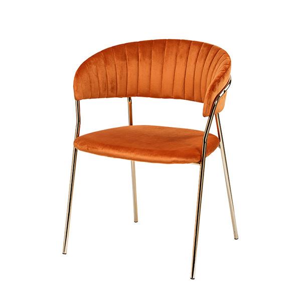 CE-686/인테리어 식탁 의자 카페 디자인 골드 체어
